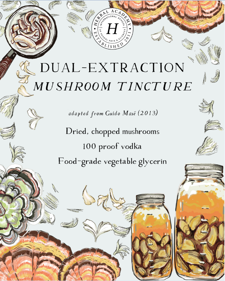 mushroom extraction tincture