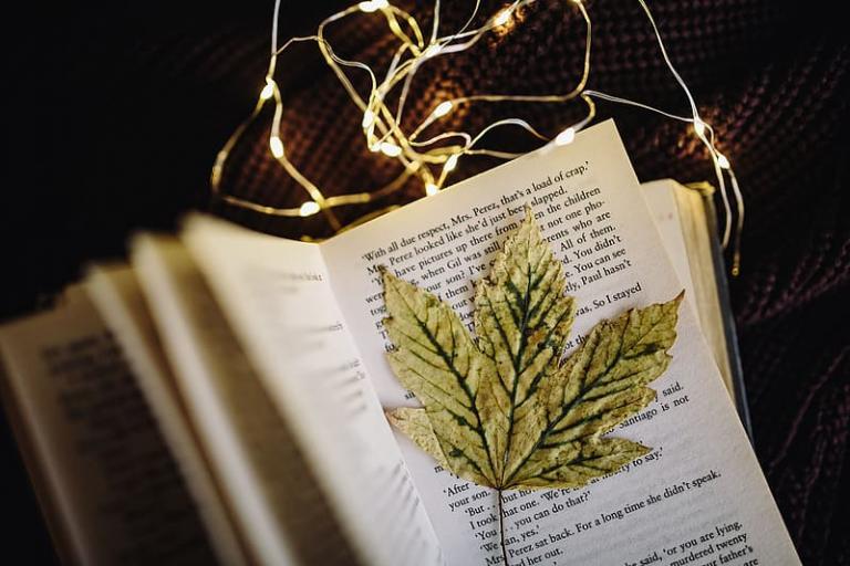Plant Spirit Familiars | Coby MichaelWard