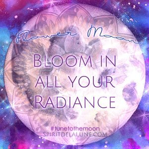Full Moon Flower Essence Ceremony — Spirit de la Lune